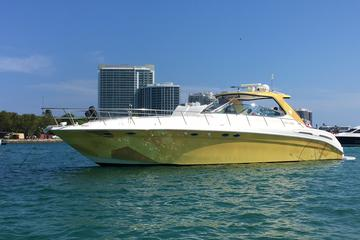 54' SeaRay Sundance 8hr Charter with...