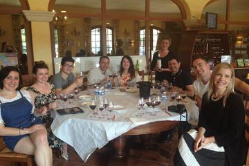 Small group Medoc Food and Wine Tour with Tasting from Bordeaux