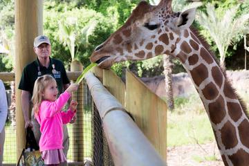 San Antonio Zoo General Admission