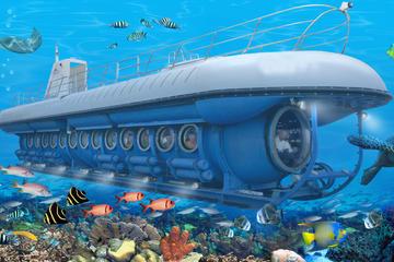 Excursión por la costa de Cozumel: Aventura submarina Atlantis