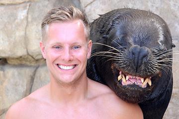 Encuentro con leones marinos en Ocean World