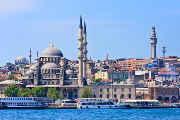 Excursión privada: crucero por el Bósforo y bazar egipcio de Estambul