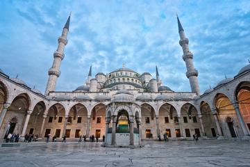 Privat tur: Istanbul-sightseeing på en dag, herunder Den Blå Moské...