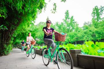 Half-Day Small Group Best of Chengdu Bike Tour