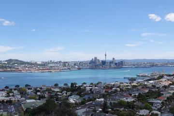 Half-Day Auckland Scenic Tour