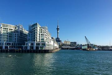 Private Tour: Half-Day Auckland Scenic Tour