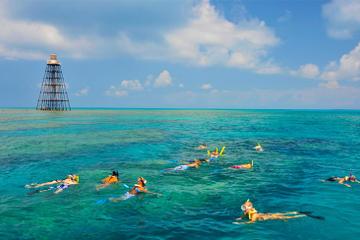 Cruzeiro de mergulho com snorkel no recife de Key West