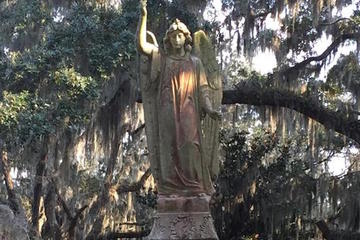 Bonaventure Cemetery Walking Tour with Transportation