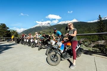 Guided Scooter Tours