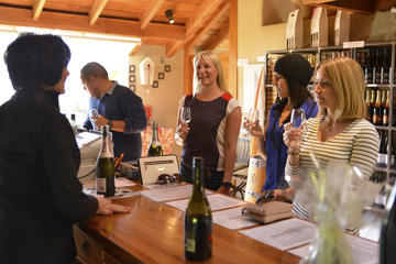 Half-Day Wine Tour from Picton
