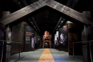 Rotorua Museum Admission with Guided Tour