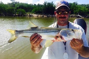 6-hour Panama City Inshore Fishing Trip