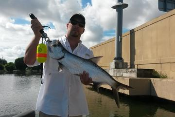 Book Clearwater Inshore Fishing Charter on Viator