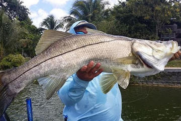 Book Homosassa Inshore Fishing Charter on Viator