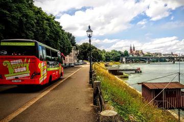Tour notturno di Basilea in bus