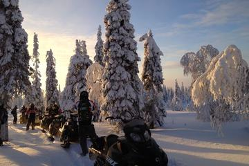 Arctic Snowmobile Tour to the