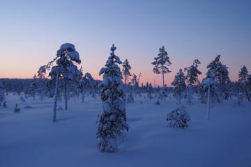 Santa Claus Sleigh Ride around Arctic Circle from Rovaniemi
