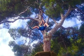 Mallorca Forestal Park Zipline...