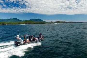 Vancouver Island Whale Watching Tour