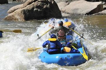 Day Trip Full Day Browns Canyon Rafting near Buena Vista, Colorado