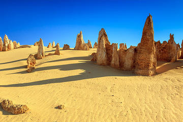 Full-Day Pinnacles Desert and Yanchep National Park Tour From Perth