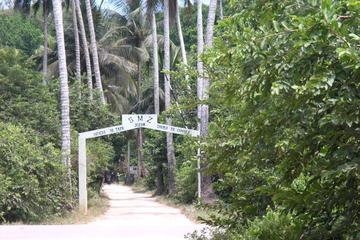 Half-Day Jozani Forest Guided Tour from Zanzibar