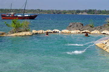 Wasini Island Full-Day Dhow Sailing Tour from Mombasa