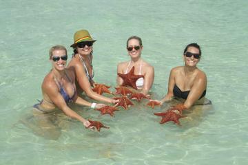 Excursión en moto acuática a Starfish...