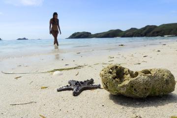 Starfish Beach and Stingray City Jet...