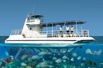 Grand Cayman Semi-Submarine Tour ...