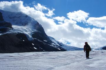 Athabasca Glacier Full-Day Tour