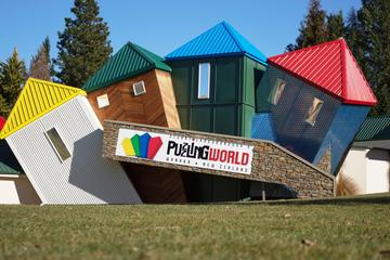 Combo Admission to Puzzling World