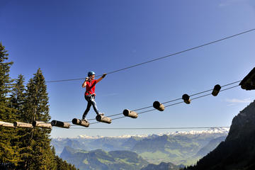 Mount Pilatus Rope Park Entrance Ticket