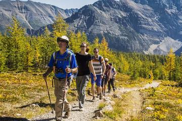 Banff National Park Guided Hike with...