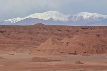 Private 3-Day High Desert Safari Tour...