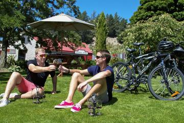 Self-Guided Private tour: Gibbston Valley Bike Ride with Winery Cave...