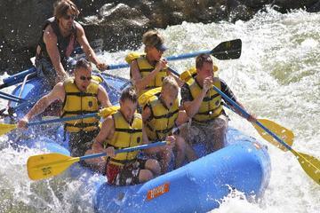 Colorado River Half Day Rafting Trip