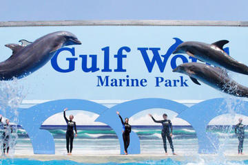 Day Trip Gulf World Marine Park General Admission near Panama City Beach, Florida