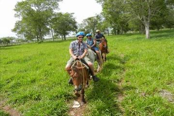 Full-Day Punta Cana Trip Including Horseback Ride