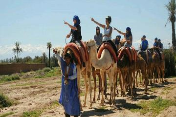 2-Hour Camel Ride in Marrakech