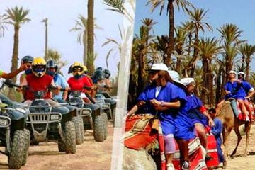 Half-Day Guided Quad Biking Tour and Camel Riding  Experience in...
