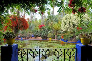 Majorelle Garden and Old City Shopping Experience: Half-Day Private...