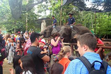 ABORIGINE SETTLEMENT & ELEPHANT SANCTUARY