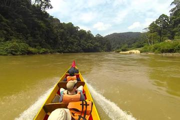Day Tour National Park (Taman Negaran Rainforest) Ex-KL