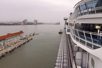 Day Trip from Port Klang Terminal to Kuala Lumpur City with Lunch