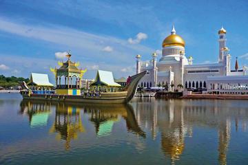 Discover Brunei: Half Day City Tour