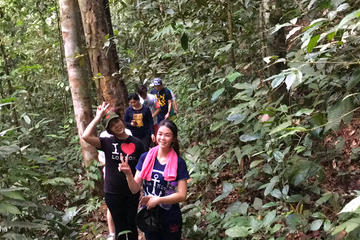Jungle Trek to a Waterfall With Jungle Guide at The Dusun From Kuala Lumpur