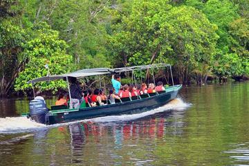 Klias River Safari from Kota Kinabalu