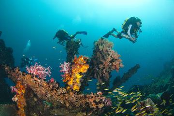 Kota Kinabalu Leisure Diving (Experienced Divers)