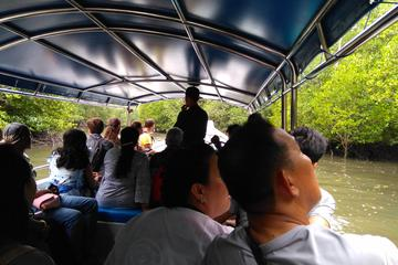 Langkawi Mangrove Forest & Cave Exploring Boat Private Tour